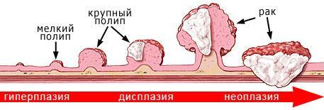 Gastroenterology_002